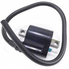 6v/12v CDI Ignition Coil Single HT Lead + 1 Terminal (55mm)
